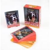 Jocul Regatul Emoțiilor Animalelor
